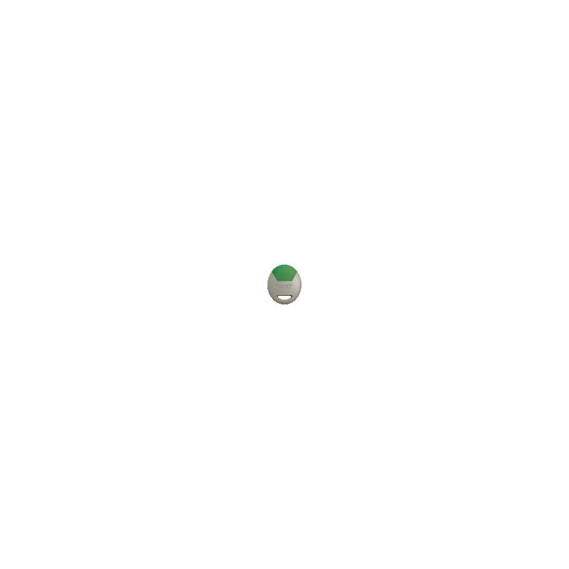 Badge Electronique De Proximité Gris/Vert Comelit CLE/GV